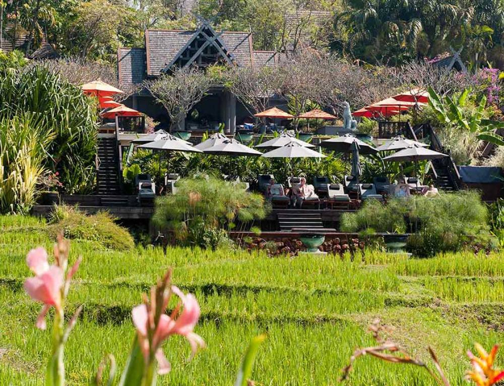 Best Spa Resorts to Stay in Chiang Mai