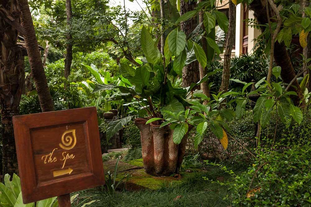 Thai spas Chiang Mai