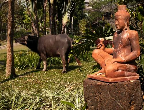 5 Best Chiang Mai Luxury Hotels and Resorts for an Unforgettable Experience